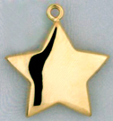 M1185 Hollow Star Charm
