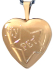 Star Pet heart locket