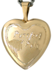 Purrrfect pals cat locket