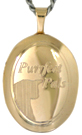 gold cat oval locket