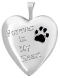 L5228 forever in my heart pet cremation locket